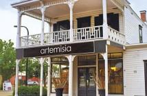 Artemisia-01__500X500