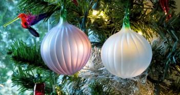 Onions on tree
