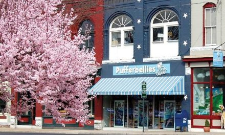 Staunton, Virginia Toy & Book Shop: Pufferbellies