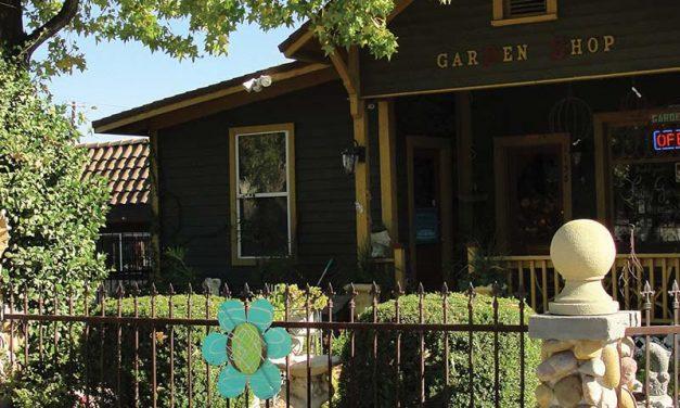 Ramona California Gift Shop: Designer Stone Garden Shop