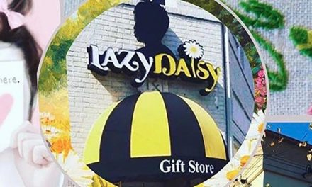 Virginia Gift Shops: The Lazy Daisy