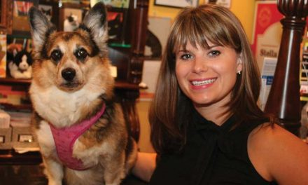 Williamsburg, Virginia Pet Store: The Nautical Dog